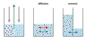 Umkehrosmose Wasserfilter - Funktion und Prinzip